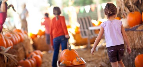 Children at a pumpkin farm enjoying a fall festival in the Buffalo, NY, area