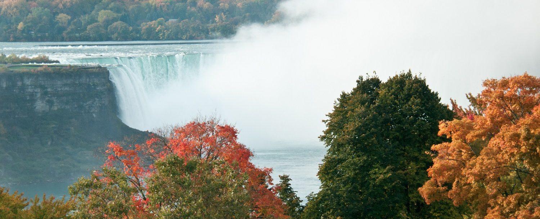 Niagara Falls Foliage